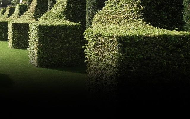 İç Bahçeler